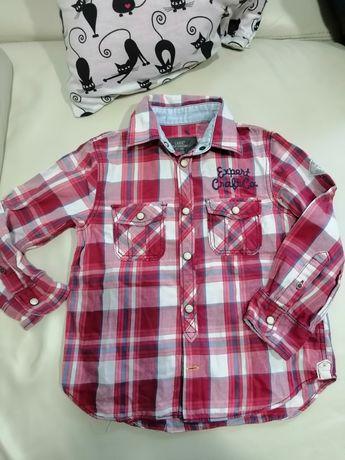 Koszula sportowa H&M 104
