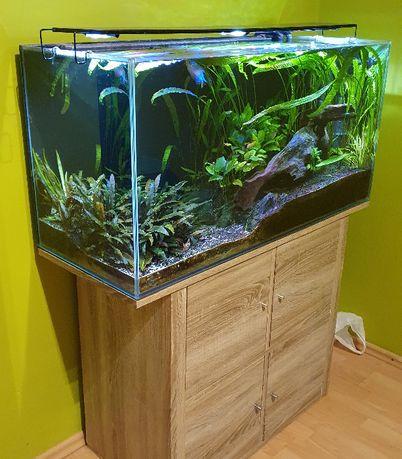 Kompletne akwarium 200 l, belka LED, filtr, osprzęt, życie, akcesoria