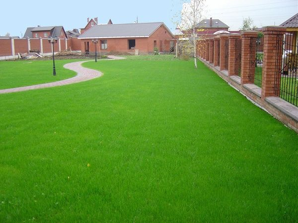 Посевной газон под ключ + автополив. Самая дешёвая цена