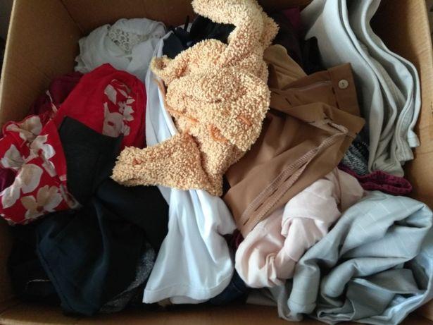 bluzki,spodnie,spódnice,krótkie spodenki,suknie,żakiety,swetry,kurtki,