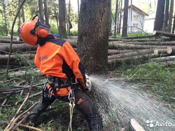 зрізаєм небезпечні дерева