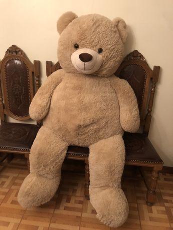Urso de pelusche