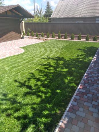 Рулонный газон, посевной газон, автоматический полив.