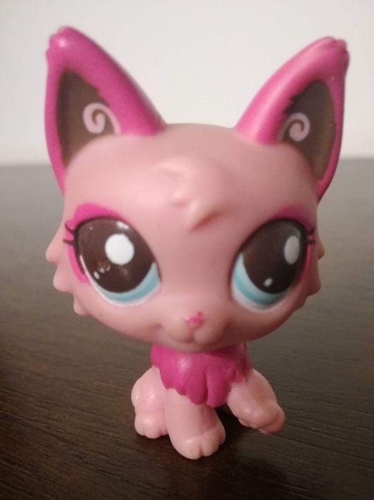 littlest pet shop shorthair kotek pers - UNIKAT Jaworzno - image 1