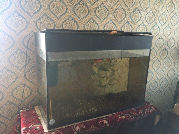Продам аквариум 100л