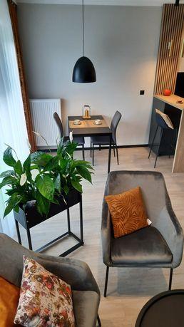 Cudowny apartament na Nowym Tysiącleciu czeka na pierwszego lokatora !