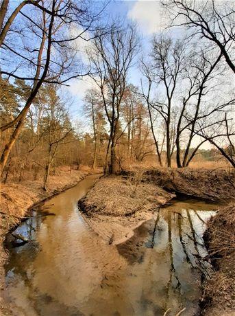 3000m2, 2 działki w lesie, 10km od Łodzi