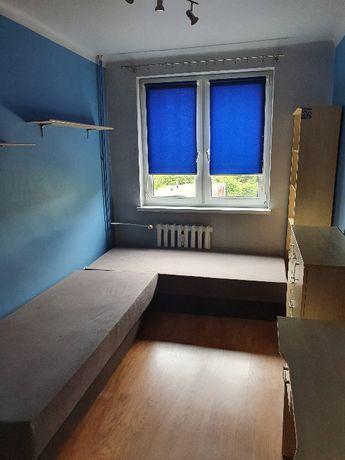 Mieszkanie 2 pokojowe - wynajem
