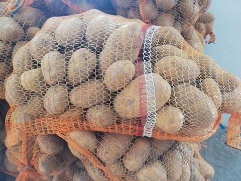 Ziemniaki żółte Lord - od rolnika