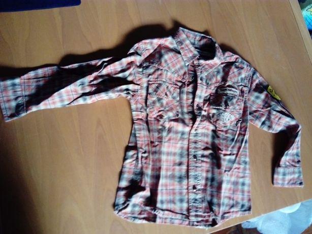 Camisa Petit Patapon criança marca de prestígio