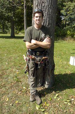 Wycinka drzew, podnośnik koszowy, rębak do gałęzi, frezowanie pni