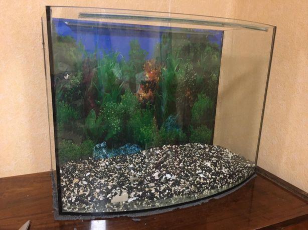 Продам аквариум на 80 литров со всем необходимым
