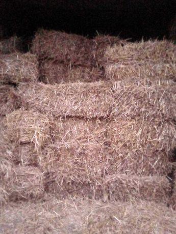 Продам пшеничную солому в тюках