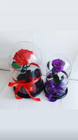Роза в Колбе +Гравировка,Коробка,Гарантия.Лучший подарок к 8 марта