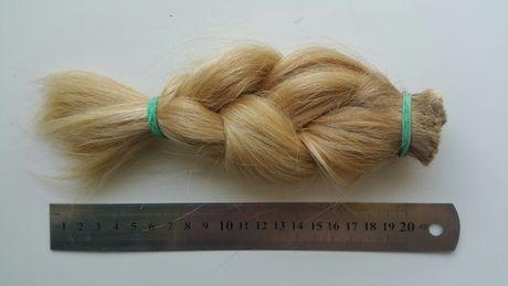 Волосы Блонд Коса