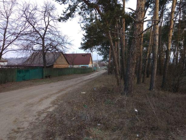 Продається будинок с.Костянтинівка