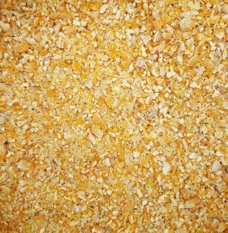 Kukurydza *MIELONA /wysyłka