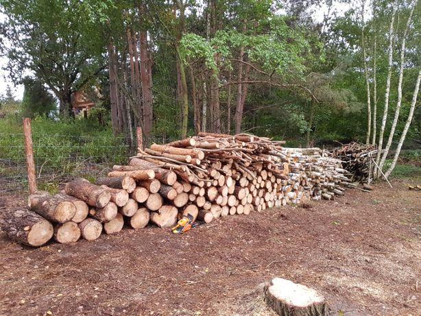 Sprzedam drewno opałowe metry (sosna, brzoza, liściaste)