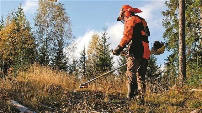 Limpeza de terrenos e poda de árvores