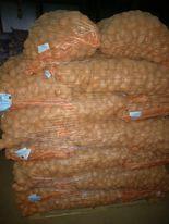 sprzedam ziemniaki sadzeniaki kwalifikowane