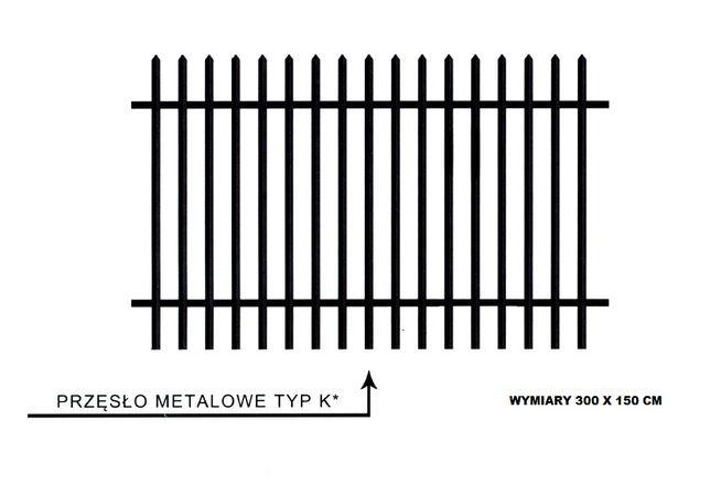 płot przęsło ogrodzenie metalowe czarne 300x150cm