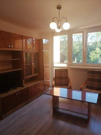 Mieszkanie do wynajęcia Brzesko 3 pokoje z kuchnią