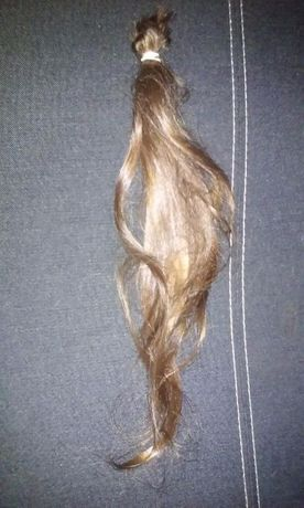 włosy brąz