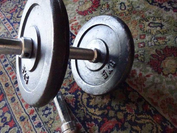 Halteres de musculação clássicos, peso 10 Kilos cada.