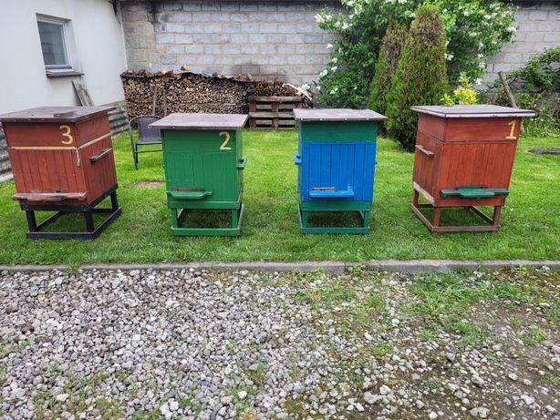 Ule wielkopolskie ul pszczoly odklad odklady