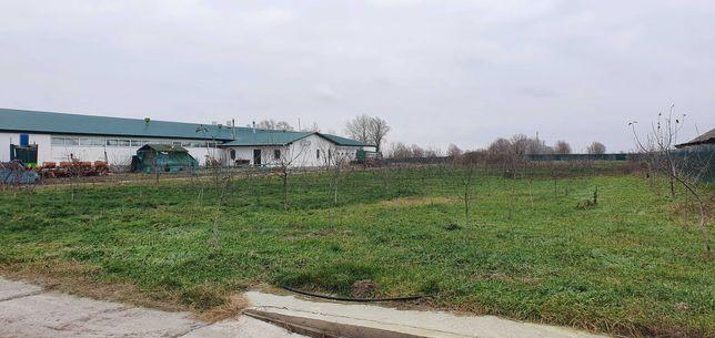 Срочно современное фермерское хозяйство в Киевской области