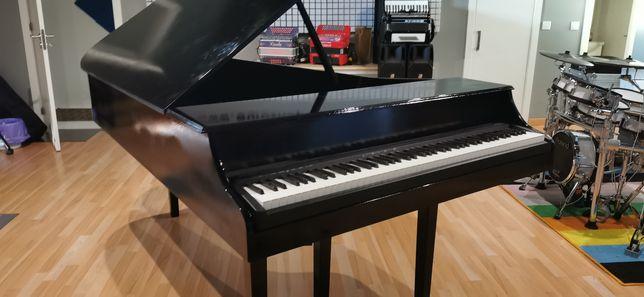 Piano Digital NOVO Cauda Acústica Full Size