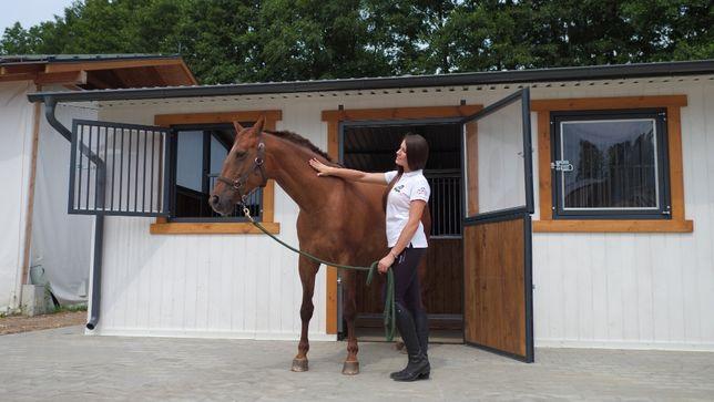 Stajnie modułowe, stajnie dla koni Gillmet Horses