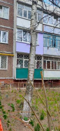 Продам 1 комнатную квартиру в районе Рокоссовского