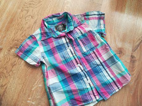 Koszulka H&m r 104 st bdb 100% bawełna