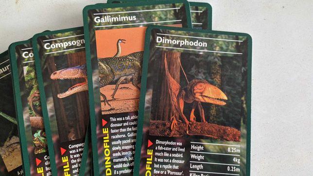 Набор карточек Динозавры на английском