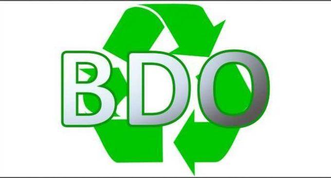Pomagam z systemem oraz wnioskami, sprawozdania BDO