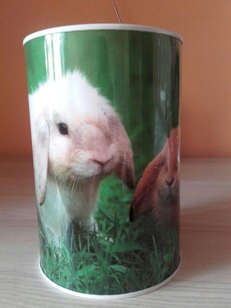 Skarbonka puszka w króliki