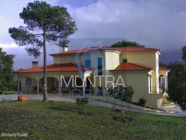 Quinta (10.000 m2) Murada com Moradia T 7+1 (2003) - Excelente Constru