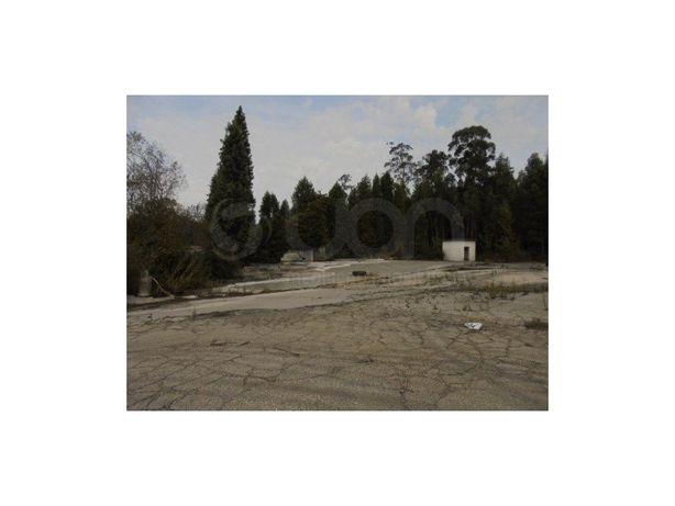 Terreno em Águeda