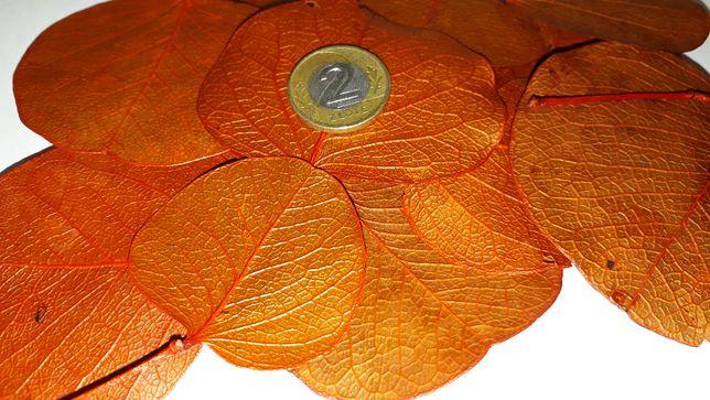 Listki liście dekoracyjne 100% naturalne pomarańczowe paczka 30g