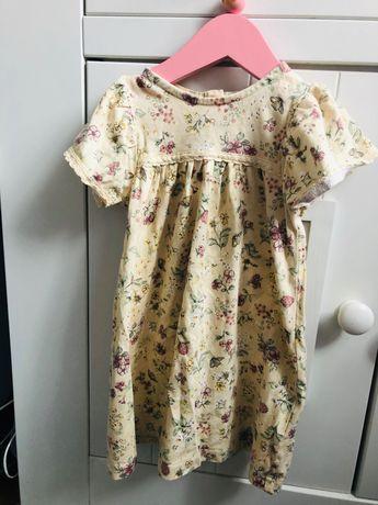 Newbie 86 sukienka kwiaty falbanka