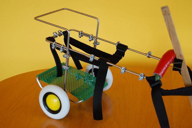 Wózek dla kota, inwalidzki