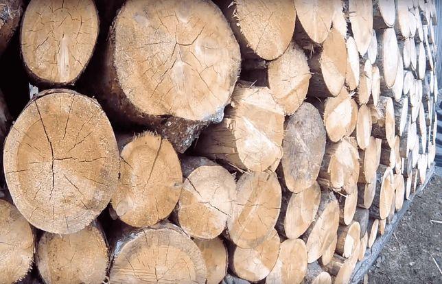 Продам дрова ясен, клен