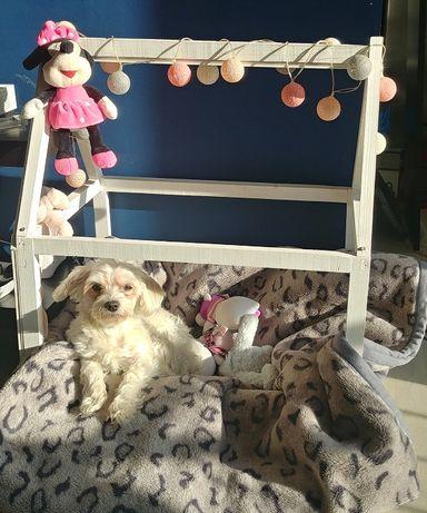 Domek drewniany buda łóżko dla małego psa oświetlenie led
