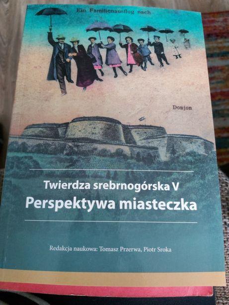 Twierdza srebrnogirska V Perspektywa miasteczka Tomasz Przerwa Piotr