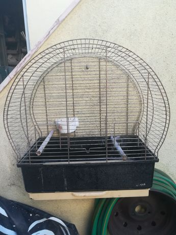 Gaiola Grande / Aves