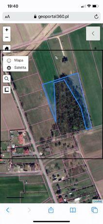 działka rolno budowlana sąsiadująca z lasem Mosty Goleniów 0,56 ha