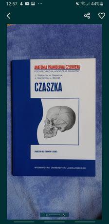 2 książki medyczne Czaszka + Kończyna górna i dolna