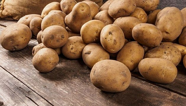 Продам насіннєву картоплю