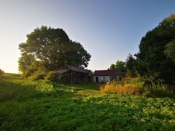 Dom z zabudowaniami gospodarskimi, działka 25 arów - Grębocin